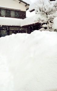 snow_02